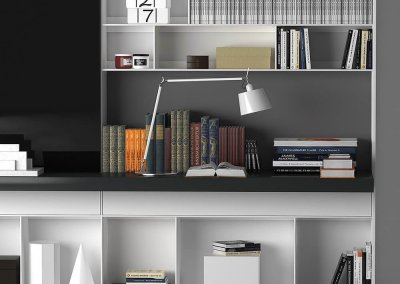 B&B MAXALTO 4 Bookcase 3D model (3)
