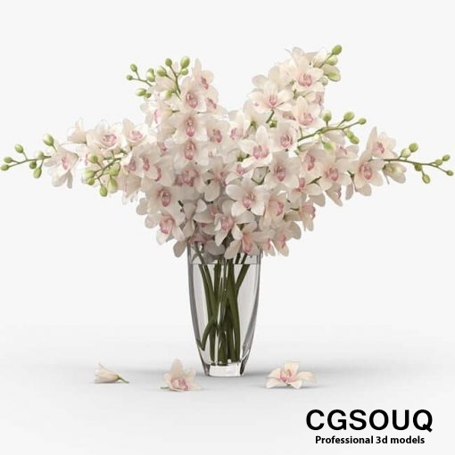 Bouquet of orchids 1