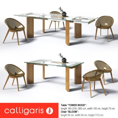 Calligaris Tower Wood Bloom Table & Chair 3D Model