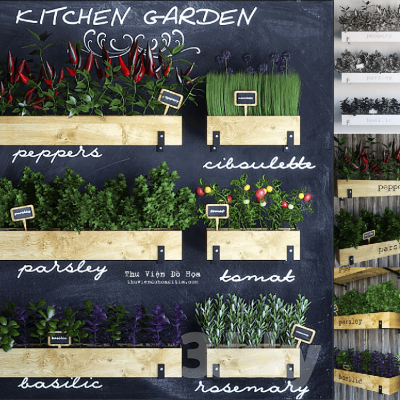 Kitchen garden 02 3D model
