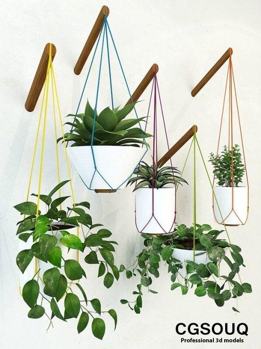 Handing pot plant 3D model 1