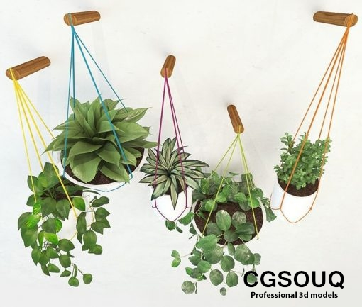 Handing pot plant 3D model 4