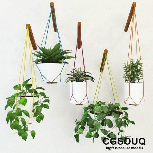 Handing pot plant 3D model 5