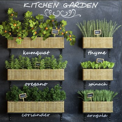 Kitchen garden 3D model 1