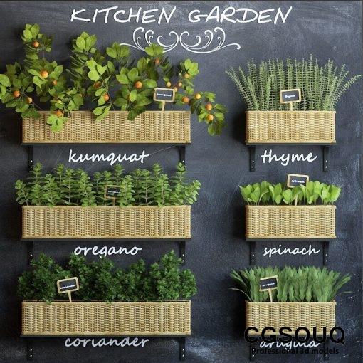 Kitchen garden 3D model 1