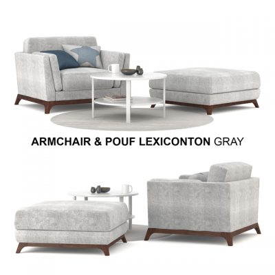 Lexiconton Grey Armchair & Pouf 3D Model