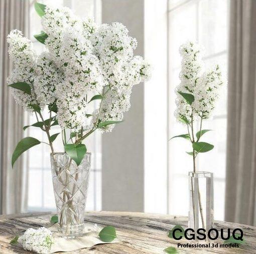 Lilac Flower in Vase 3D Model 1