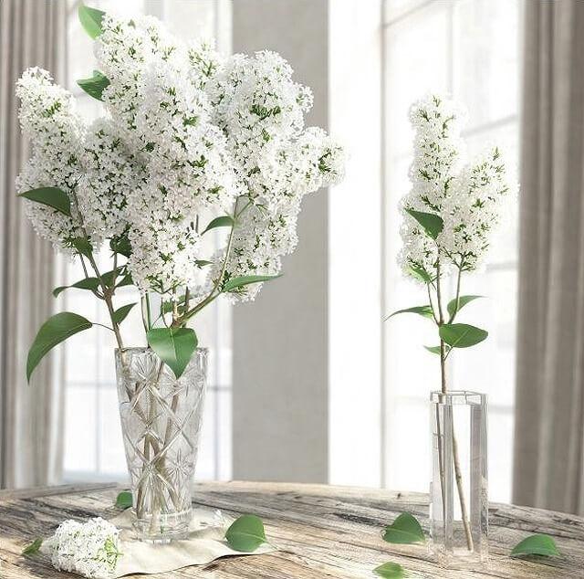 Lilac flower in vase 3d model for download cgsouq lilac flower in vase 3d model 1 mightylinksfo