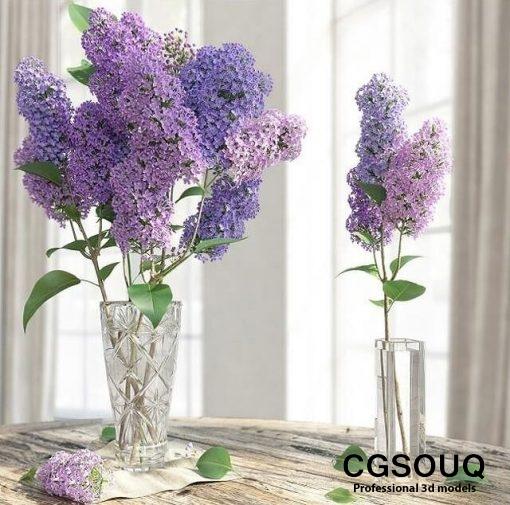 Lilac Flower in Vase 3D Model 2