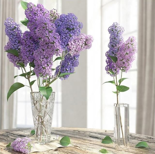 Lilac Flower In Vase 3d Model For Download Cgsouq
