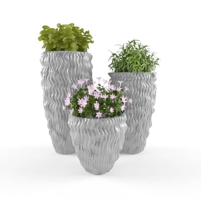 PLANTS-64 3D Model