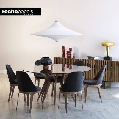 Roche Bobois Aster & Tournicoti Table & Chair 3D Model