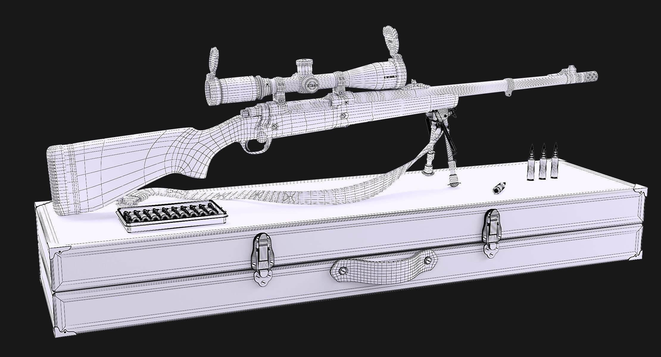 Ruger Guide Gun 5