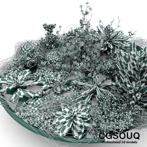 Succulent Plants 3D model (6)