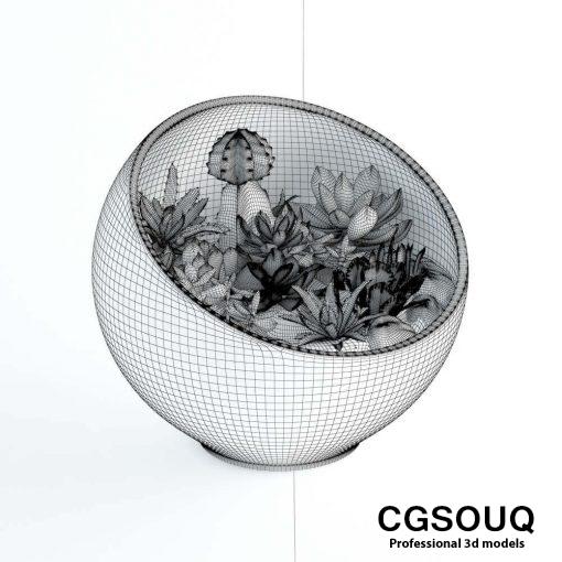 Succulent plant 02 3D model 2