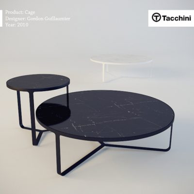 Tacchini Cage Table 3D Model