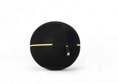 Technogym Wellness Ball ACTIVE 3D Model for Download (2)