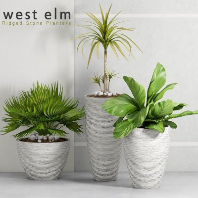 West elm ridged stone decorative plant 3D model 1