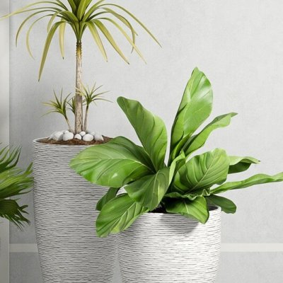 West elm ridged stone decorative plant 3D model