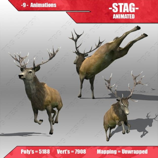 stag animated 2